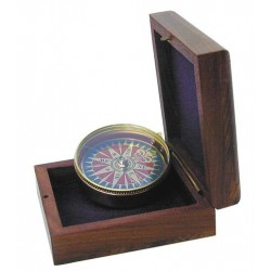 Compass in case