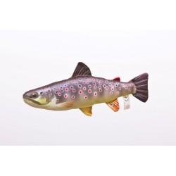 Pillow trout