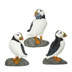 Magneet papegaaiduiker (3 assorti)